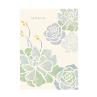 Notecards - Succulents Box of 10