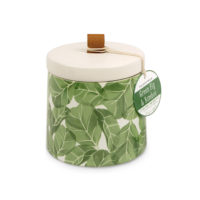 Paddywax Green Fig & Bamboo 10 oz. Botany Candle