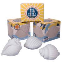 Seashell Twilights - 3 Assorted Styles